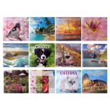 2020 16 Months Dated Wall Calendar - French - 1