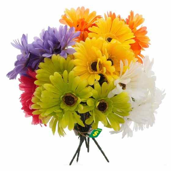 Gerbera Daisy Flower Bush (Assorted Colours)