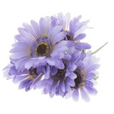 Bouquet de marguerites (Couleurs assorties) - 1