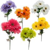 Bouquet de marguerites (Couleurs assorties) - 2