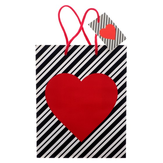 Medium Printed Gift Bag 2PK
