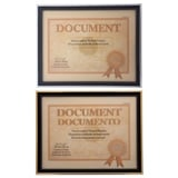 "8.5""x11"" Document Frame with Metallic Trim (Assorted colours) - 1"