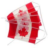Canada Flag Banner - 0