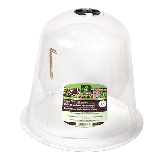 Garden Cloche with Metal Pegs