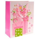Large Gift Bag (Assorted designs) - 2