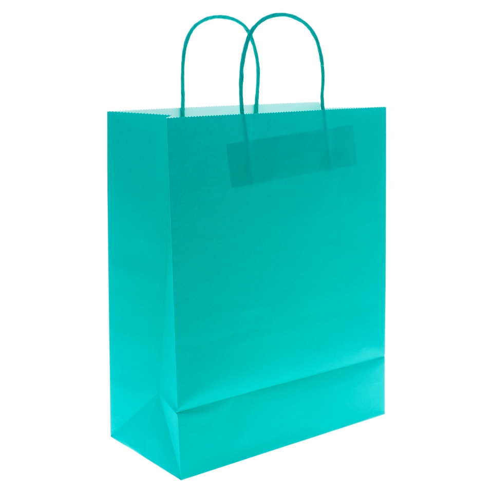 Large Kraft Paper Bags with Handles 2PK (Assorted Colours)