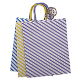 Large Kraft Paper Bags with Handles 2PK (Assorted Colours) - 2