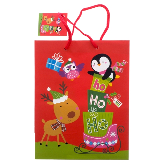 Gift Bag Medium Plain Finish 2PK (Assorted Colours and Patterns)