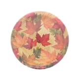 Paquet de 10 petites assiettes à motifs d'automne - 0