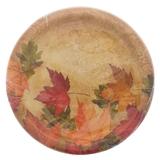 Paquet de 10 assiettes de repas à motifs d'automne - 0