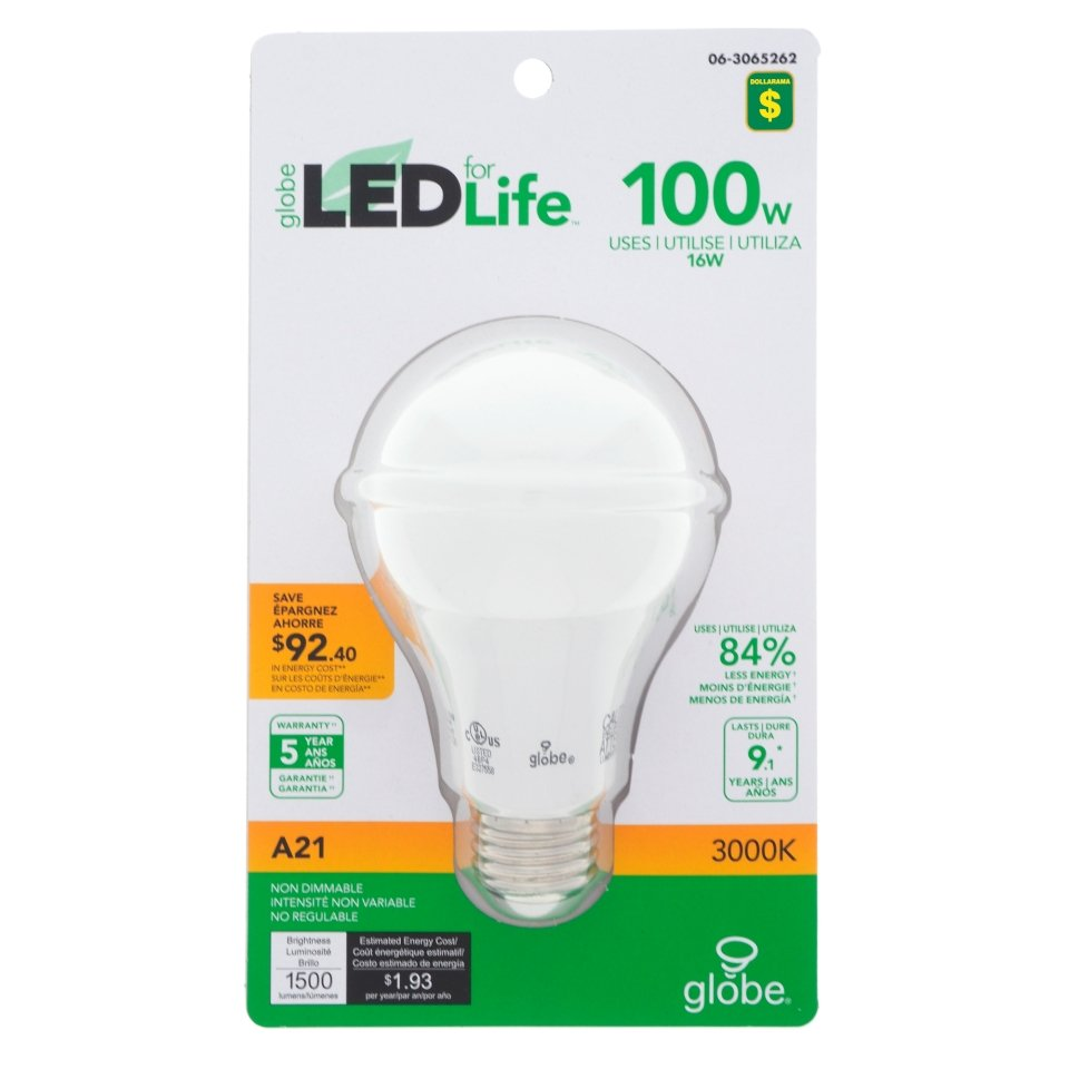 A21 100W LED 3000K Light Bulb