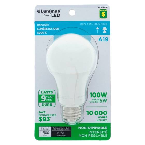 A21 100W LED Day Light Bulb
