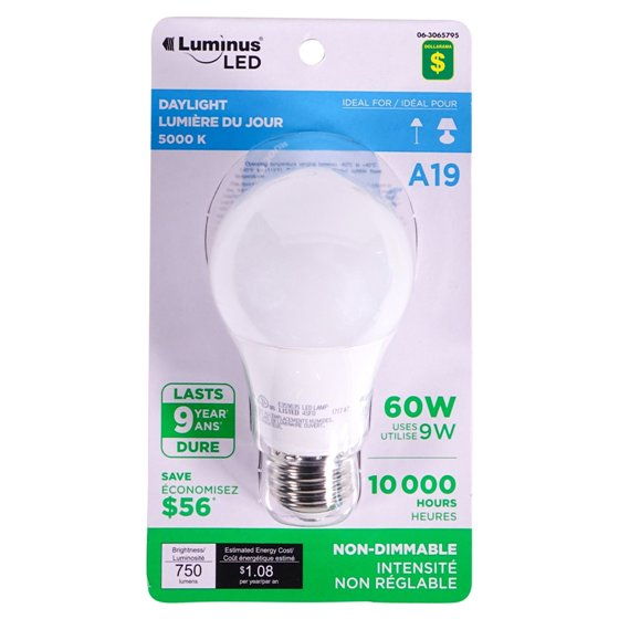 A19 60W LED Day Light bulb