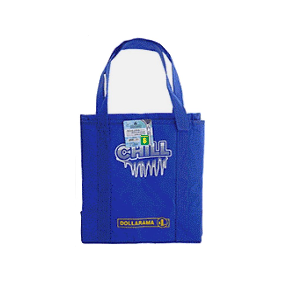 Insulated Cooler Bag with Handle