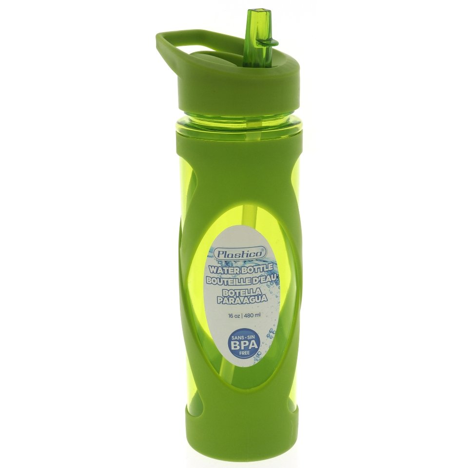 Water Bottle with Straw and Handle (Assorted Colours)