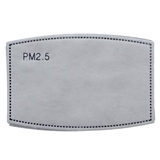 Paquet de 5 Masques PM2.5 - 2